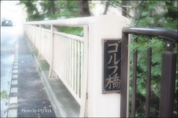 ☆P9240641